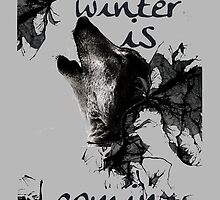 Game of thrones - winter is coming by sarahford