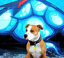 Graffiti  dog- blue by Aumareva Aumareva