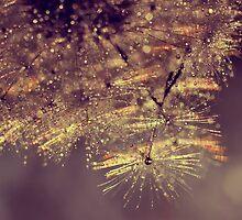 rainbow sparkle by Ingz