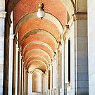 The Royal Palace, Spain  by DearMsWildOne