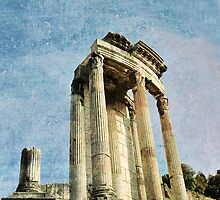 Temple of Vesta, The Forum, Rome, Italy by buttonpresser