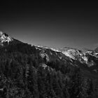 Sequoia National Park  by KentuckyJim