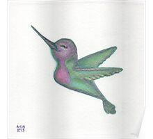 Hummingbird Friend Poster
