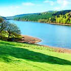 Ladybower Reservoir - Orton by Colin  Williams Photography