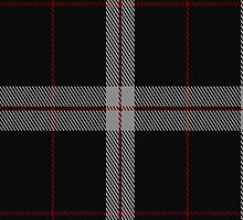 02425 Dobelman Tartan Fabric Print Iphone Case by Detnecs2013
