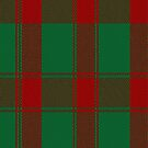 02430 Donachie Clan/Family Tartan Fabric Print Iphone Case by Detnecs2013