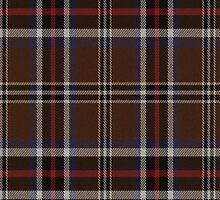 02436 El Paso County, Texas E-fficial Fashion Tartan Fabric Print Iphone Case by Detnecs2013