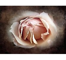 My Love is Unfolding Photographic Print