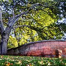 Another Brick in the Wall - Beechworth, Victoria, Australia by Martin Lomé