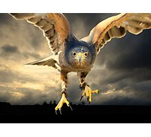 Death Comes on Silent Wings Photographic Print