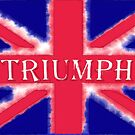 Watercolor Triumph flag by wtaylor72