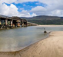 Mawddach Rail Bridge by mlphoto