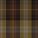 02443 Dorcas Fashion Tartan Fabric Print Iphone Case by Detnecs2013