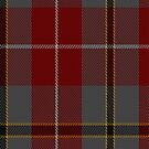 02450 Douglas Ancient Red Clan/Family Tartan Fabric Print Iphone Case by Detnecs2013