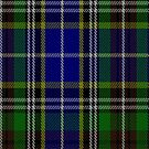 02458 Dowling District Tartan Fabric Print Iphone Case by Detnecs2013