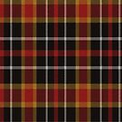 02460 Baltimore County, Maryland District Tartan Fabric Print Iphone Case by Detnecs2013