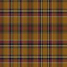 02463 Hidalgo County, Texas District Tartan Fabric Print Iphone Case by Detnecs2013