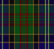 02468 Drennan Clan/Family Tartan Fabric Print Iphone Case by Detnecs2013