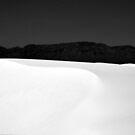 Dunescape by Gayle Dolinger