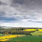 Oxfordshire view.  by Paul Richards