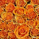 Orange Roses by Ludwig Wagner
