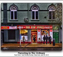 Marveling In The Ordinary by Ted Byrne