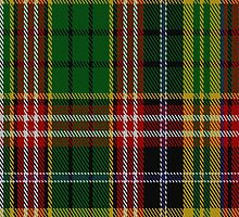 02490 Drummond of Strathallan or Ogilvy Clan/Family Tartan Fabric Print Iphone Case by Detnecs2013