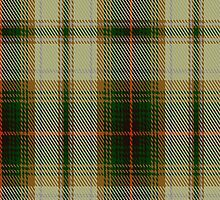 02494 Drymen Fashion Tartan Fabric Print Iphone Case by Detnecs2013