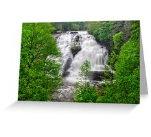 High Falls - Dupont State Forest in the Spring Greeting Card