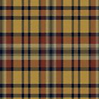 02505 Cobb County, Georgia E-fficial Fashion Tartan Fabric Print Iphone Case by Detnecs2013