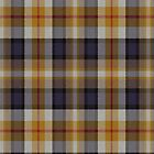 02506 Denton County, Texas E-fficial Fashion Tartan Fabric Print Iphone Case by Detnecs2013