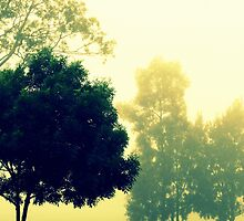 Silently Through The Mist by Evita