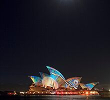 Sydney's Shining Star by Sharon Kavanagh
