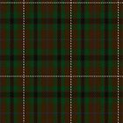 02512 Duchess of York Fashion Tartan Fabric Print Iphone Case by Detnecs2013