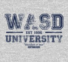 WASD University Blue by Fernsie