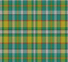 02527 Lee County, Florida E-fficial Fashion Tartan Fabric Print Iphone Case by Detnecs2013