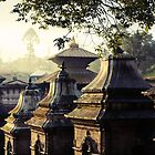 Pashupatinath Temple by Jamie Mitchell