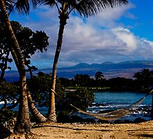 Hawaii Ocean View  by Susanne Finke