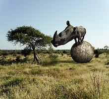 Rhinoceros Bignogginus by Randy Turnbow