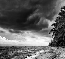 Dark 'n Stormy West Island by Karen Willshaw