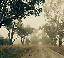 Down a foggy lane by Linda Lees