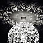 Strange Lamp II by taudalpoi