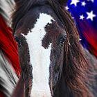 Mustang Freedom by Gene Praag