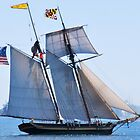Ye Old Schooner by pictureit