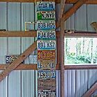 Old Missouri License Plates by Susan S. Kline