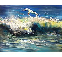 Surfing Gull Photographic Print
