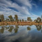 Reflections by PeterCannon
