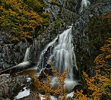 Cradle Falls by Robert Mullner