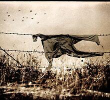 Arpaio's scarecrow by Alex Preiss