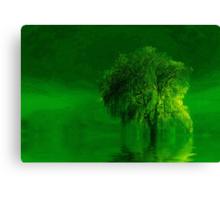 Terre verde'... Canvas Print